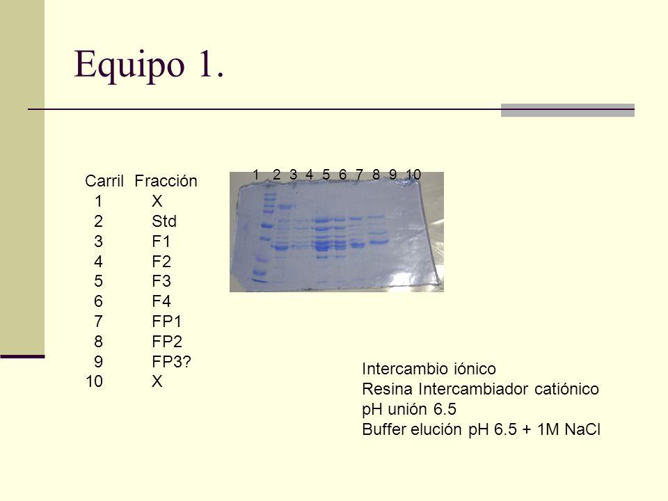 Equipo 1. Carril Fracción 1 X 2 Std 3F1 4F2 5F3 6F4 7FP1 8FP2 9FP3? 10 X 1 2 3 4 5 6 7 8 9 10 Intercambio iónico Resina Intercambiador catiónico pH un