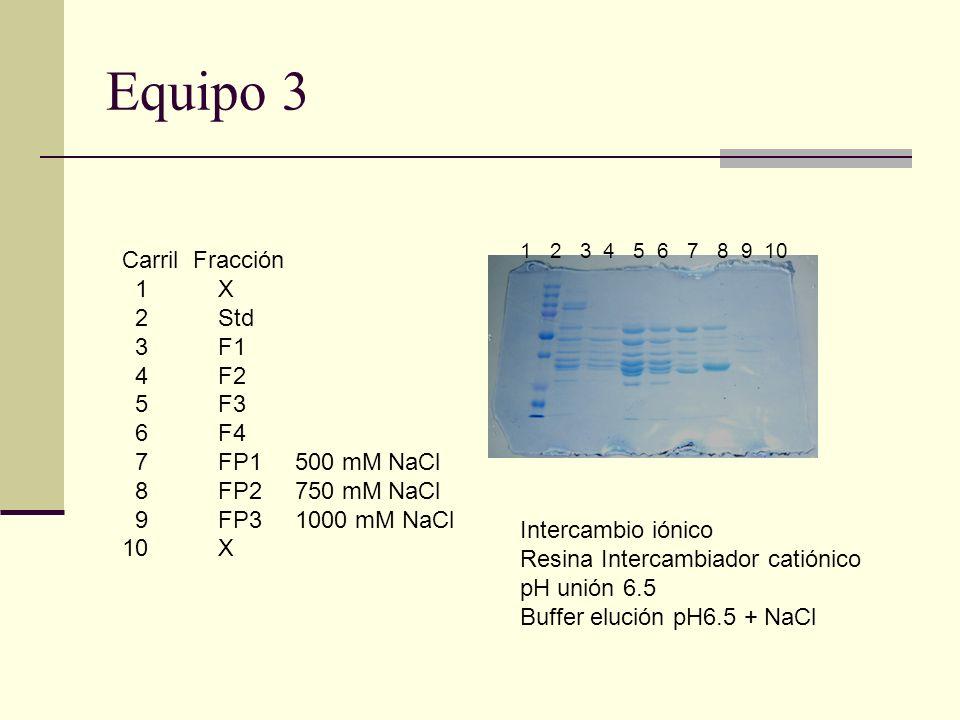 Equipo 3 Carril Fracción 1 X 2 Std 3F1 4F2 5F3 6F4 7FP1 8FP2 9FP3 10 X 1 2 3 4 5 6 7 8 9 10 Intercambio iónico Resina Intercambiador catiónico pH unió