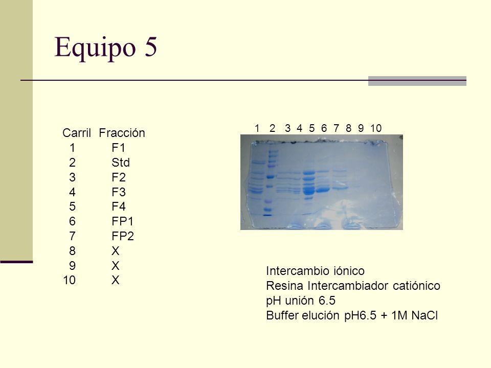 Equipo 5 Carril Fracción 1 F1 2 Std 3F2 4F3 5F4 6FP1 7FP2 8X 9X 10 X 1 2 3 4 5 6 7 8 9 10 Intercambio iónico Resina Intercambiador catiónico pH unión