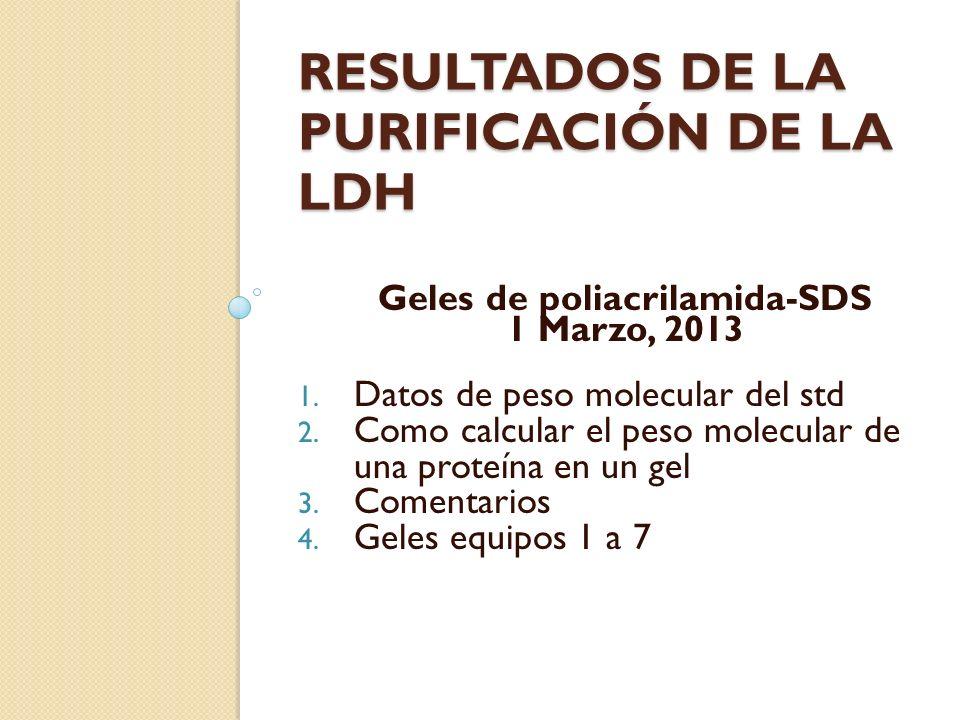 RESULTADOS DE LA PURIFICACIÓN DE LA LDH Geles de poliacrilamida-SDS 1 Marzo, 2013 1. Datos de peso molecular del std 2. Como calcular el peso molecula