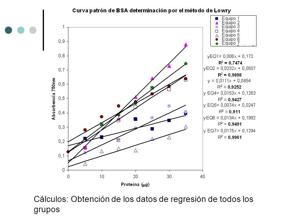 Cálculos: Obtención de los datos de regresión de todos los grupos