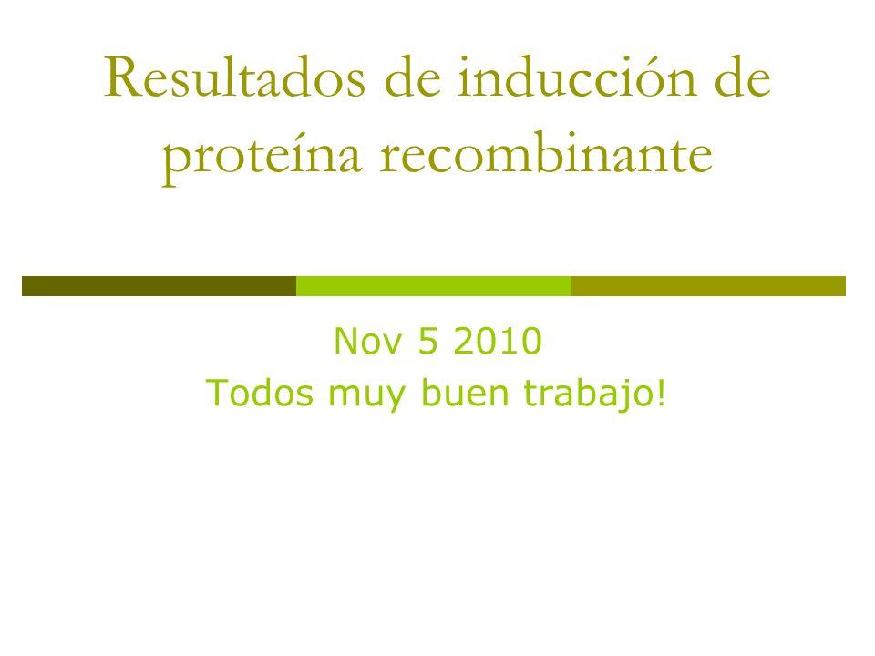 Resultados de inducción de proteína recombinante Nov 5 2010 Todos muy buen trabajo!