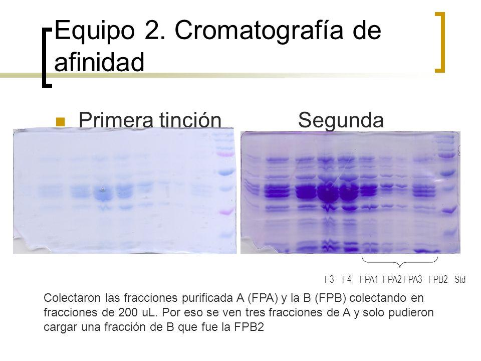 Equipos 4 y 6 Equipo 4 cromatografía de afinidad Equipo 6 intercambio iónico a pH 3.0 ( Tuvieron problemas al cargar y tomaron por eso casi no se ve ) Std F2 F3 FPA FPB