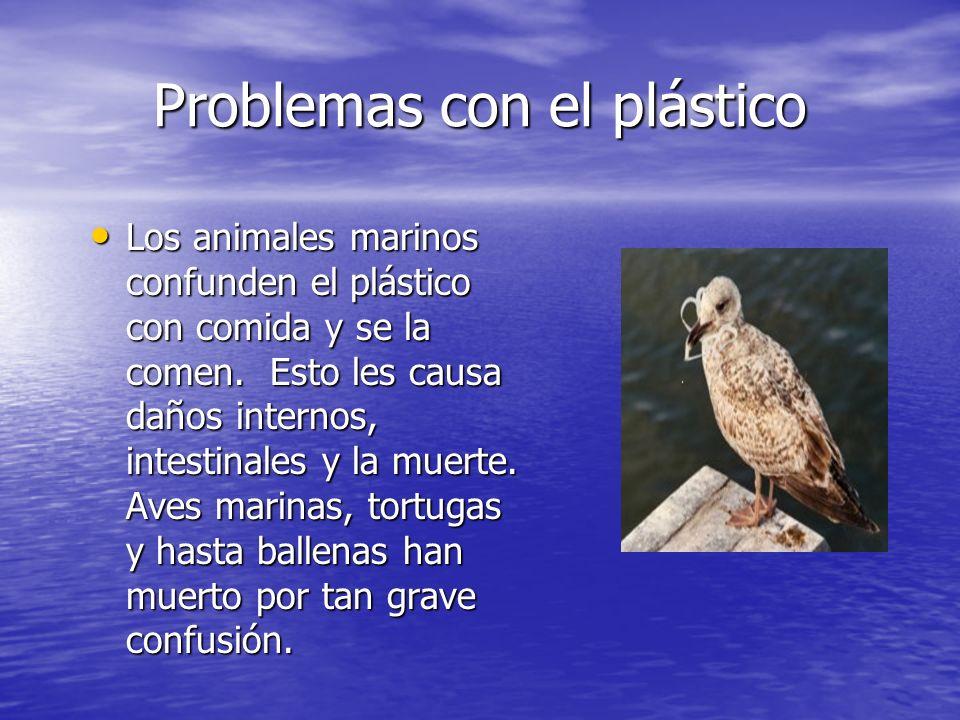 Problemas con el plástico Los animales marinos confunden el plástico con comida y se la comen. Esto les causa daños internos, intestinales y la muerte