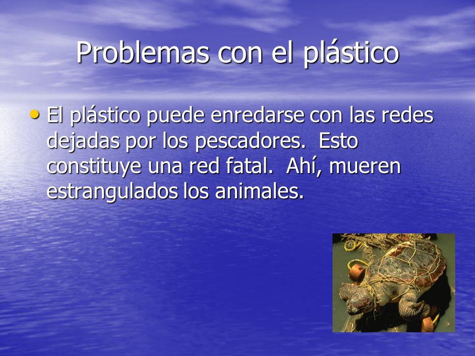 Problemas con el plástico El plástico puede enredarse con las redes dejadas por los pescadores. Esto constituye una red fatal. Ahí, mueren estrangulad