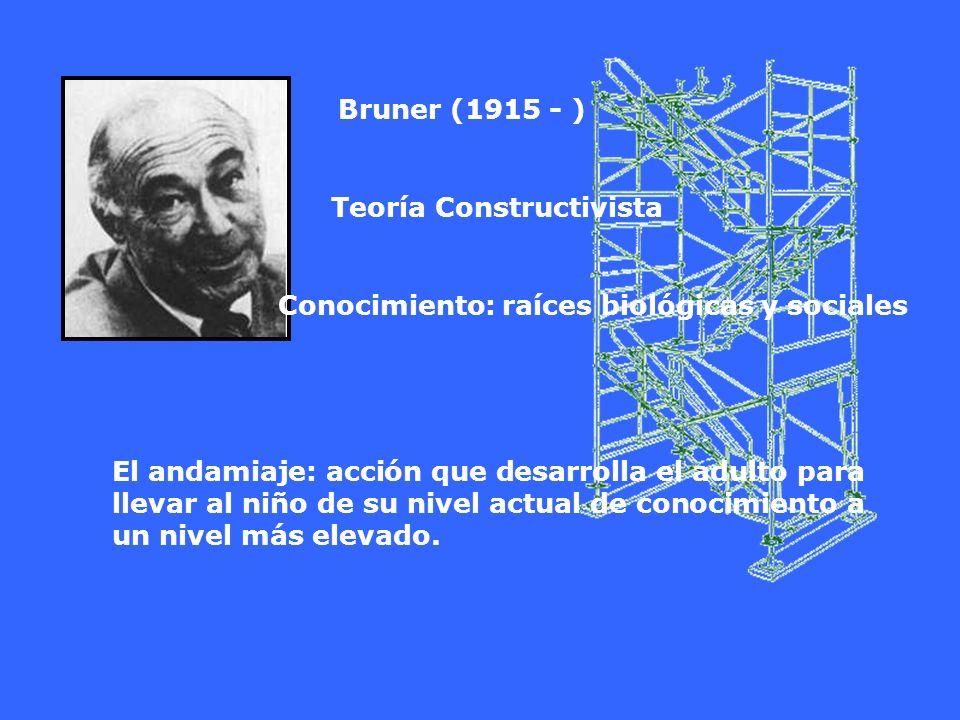 Bruner (1915 - ) Teoría Constructivista Conocimiento: raíces biológicas y sociales El andamiaje: acción que desarrolla el adulto para llevar al niño d