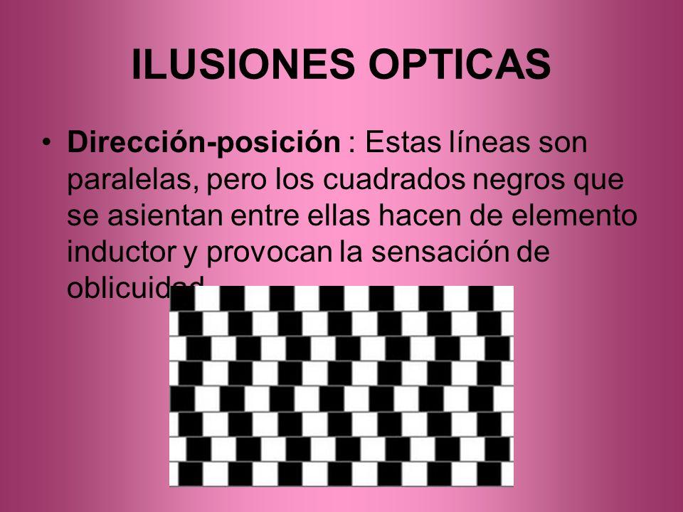ILUSIONES OPTICAS Dirección-posición : Estas líneas son paralelas, pero los cuadrados negros que se asientan entre ellas hacen de elemento inductor y