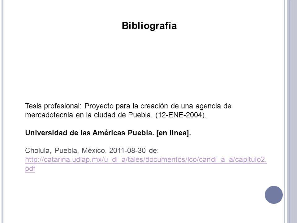 Tesis profesional: Proyecto para la creación de una agencia de mercadotecnia en la ciudad de Puebla. (12-ENE-2004). Universidad de las Américas Puebla