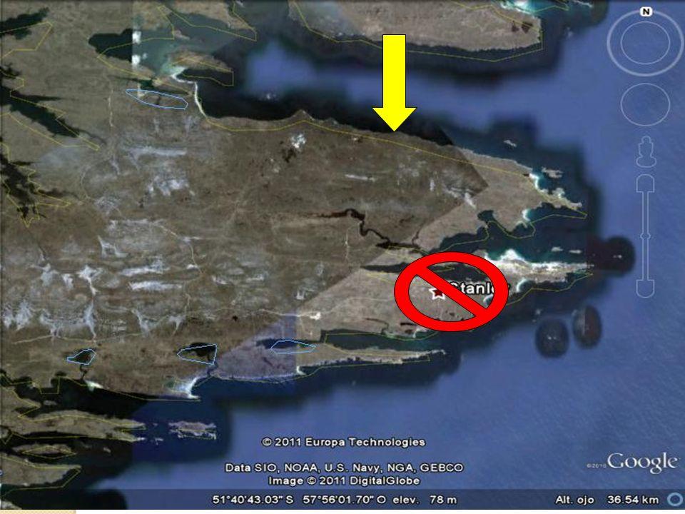 El tema de las Malvinas es un tema presente en la Constitución argentina.
