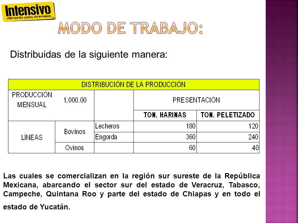 Distribuidas de la siguiente manera: Las cuales se comercializan en la región sur sureste de la República Mexicana, abarcando el sector sur del estado de Veracruz, Tabasco, Campeche, Quintana Roo y parte del estado de Chiapas y en todo el estado de Yucatán.