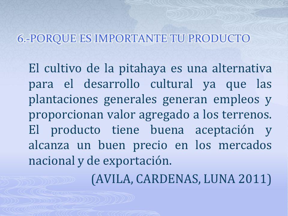 El cultivo de la pitahaya es una alternativa para el desarrollo cultural ya que las plantaciones generales generan empleos y proporcionan valor agrega