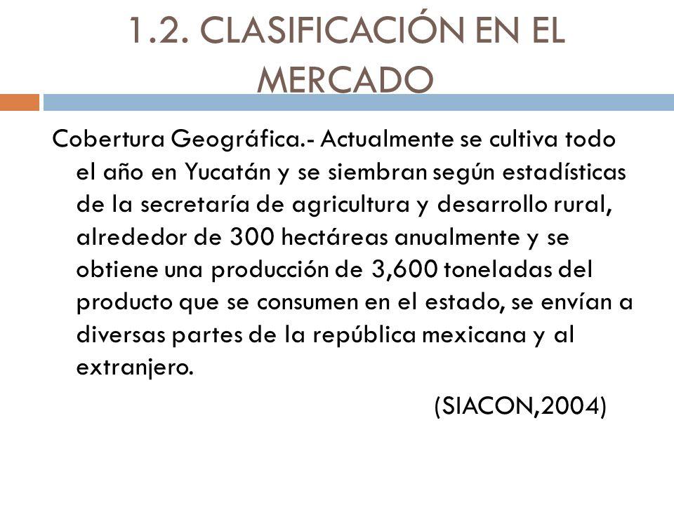 1.2. CLASIFICACIÓN EN EL MERCADO Cobertura Geográfica.- Actualmente se cultiva todo el año en Yucatán y se siembran según estadísticas de la secretarí