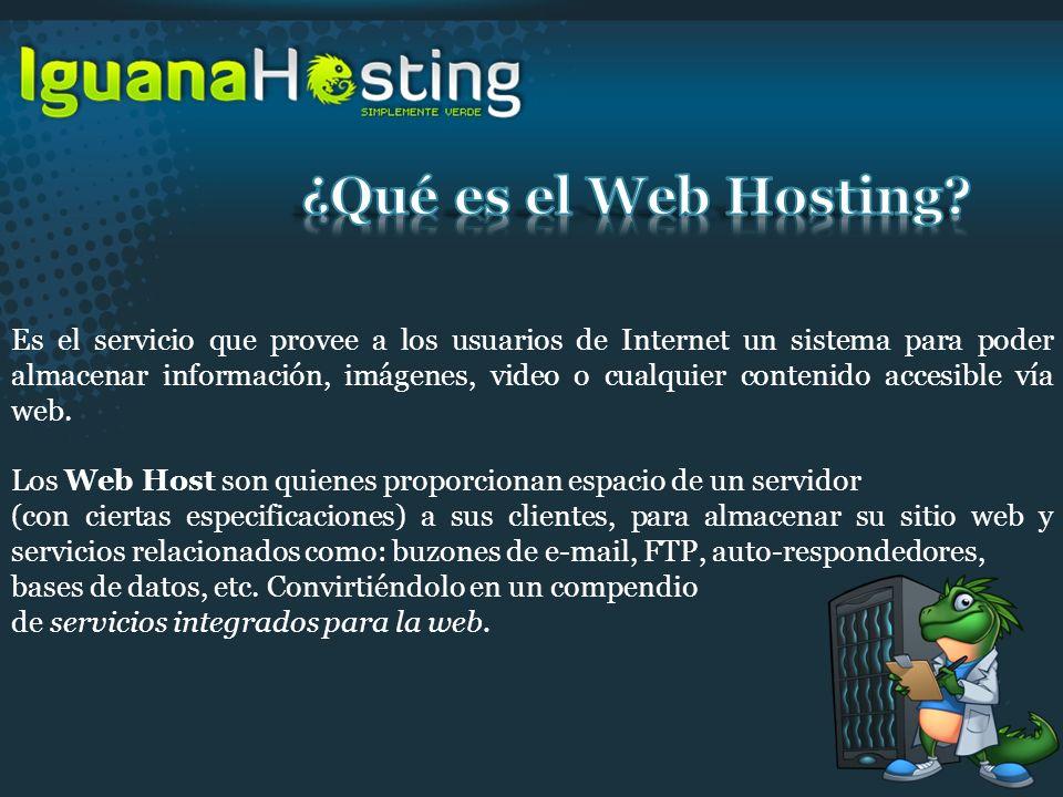 Es el servicio que provee a los usuarios de Internet un sistema para poder almacenar información, imágenes, video o cualquier contenido accesible vía