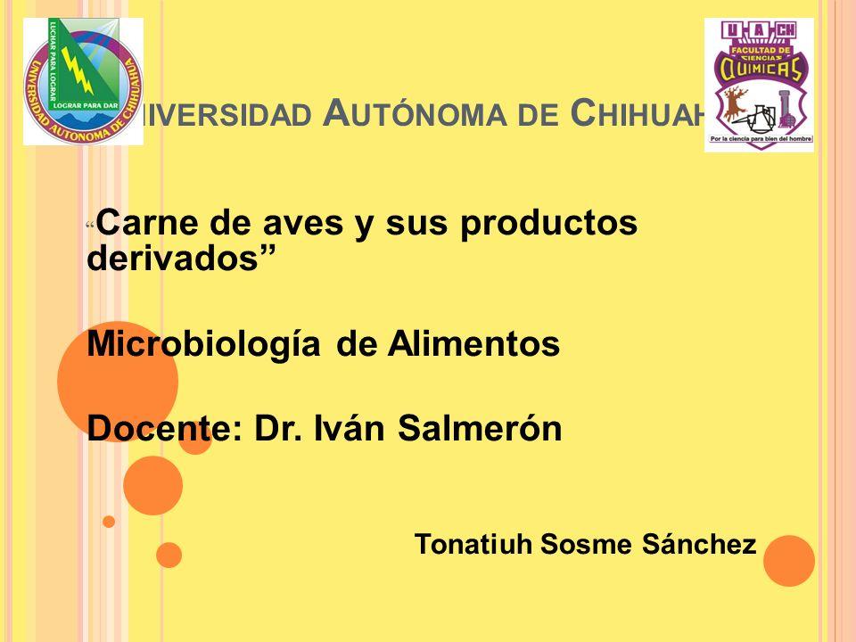 U NIVERSIDAD A UTÓNOMA DE C HIHUAHUA Carne de aves y sus productos derivados Microbiología de Alimentos Docente: Dr. Iván Salmerón Tonatiuh Sosme Sánc