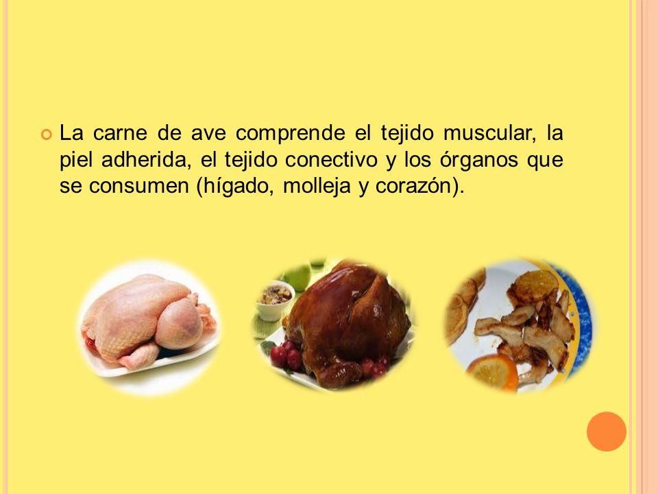 La carne de ave comprende el tejido muscular, la piel adherida, el tejido conectivo y los órganos que se consumen (hígado, molleja y corazón).