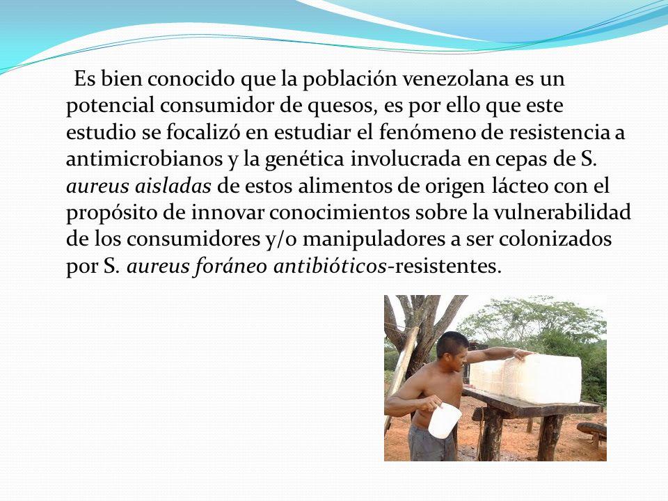 Es bien conocido que la población venezolana es un potencial consumidor de quesos, es por ello que este estudio se focalizó en estudiar el fenómeno de