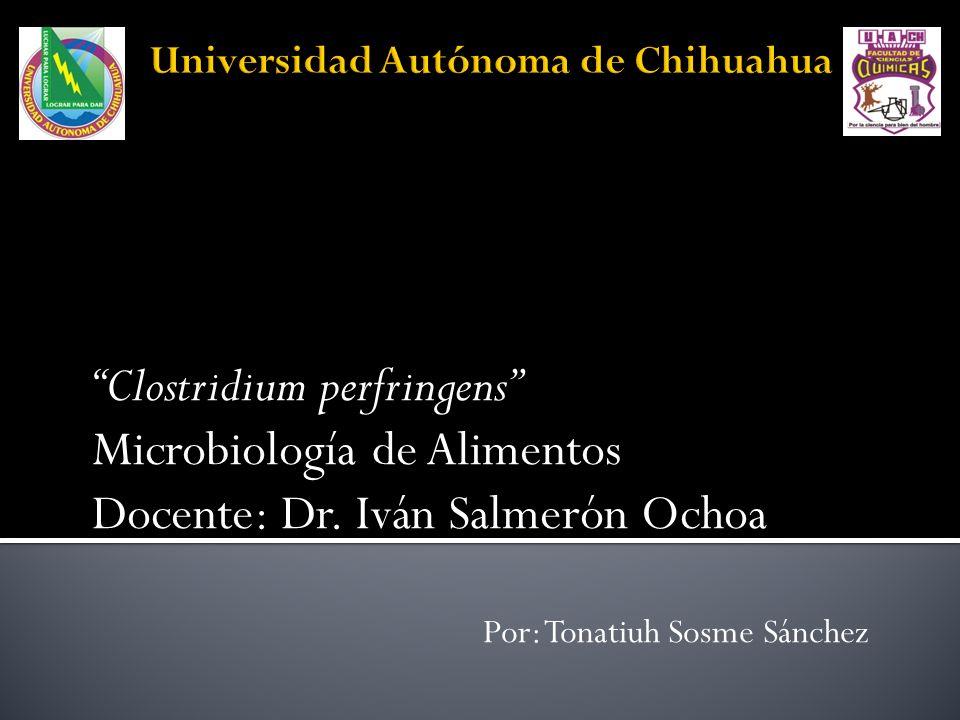 Clostridium perfringens Microbiología de Alimentos Docente: Dr. Iván Salmerón Ochoa Por: Tonatiuh Sosme Sánchez