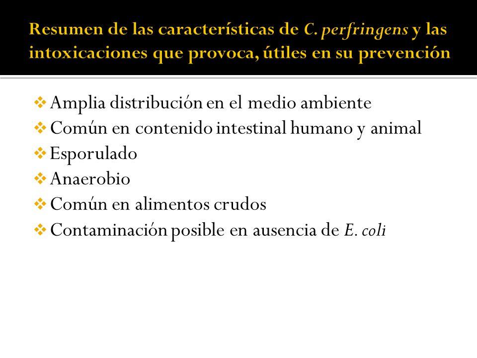 Amplia distribución en el medio ambiente Común en contenido intestinal humano y animal Esporulado Anaerobio Común en alimentos crudos Contaminación po