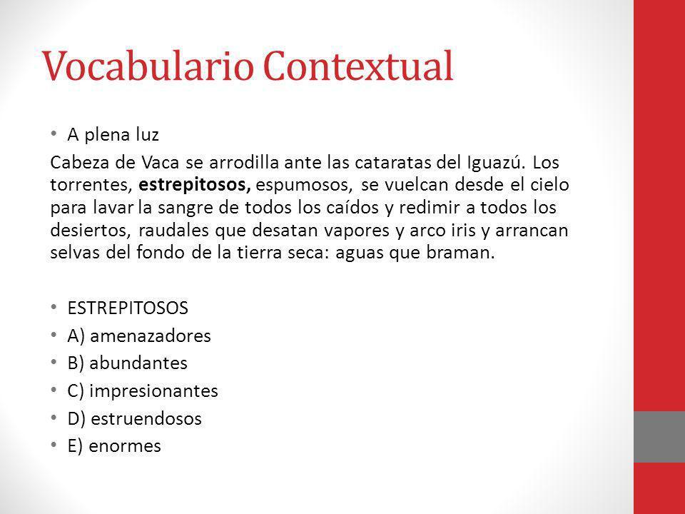 Vocabulario Contextual A plena luz Cabeza de Vaca se arrodilla ante las cataratas del Iguazú. Los torrentes, estrepitosos, espumosos, se vuelcan desde