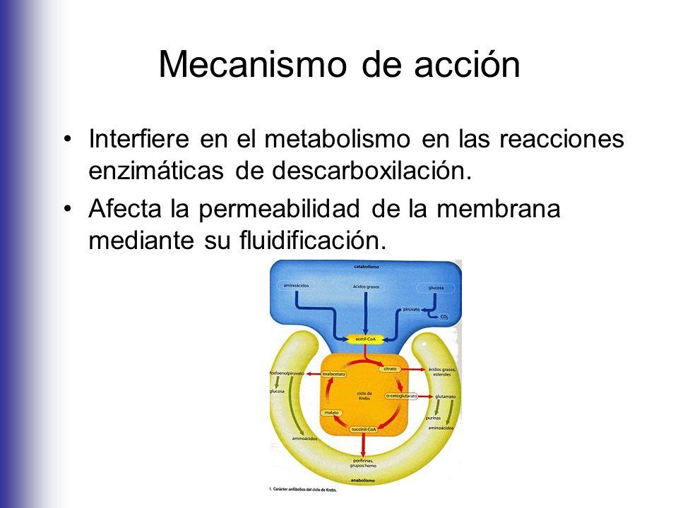 Mecanismo de acción Interfiere en el metabolismo en las reacciones enzimáticas de descarboxilación. Afecta la permeabilidad de la membrana mediante su
