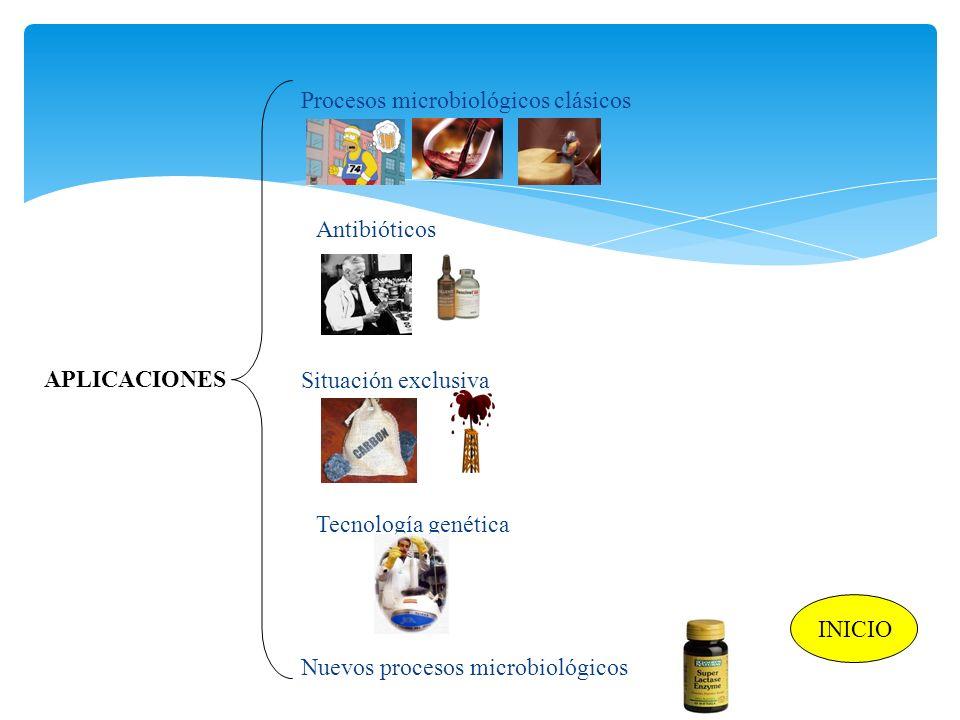 APLICACIONES Procesos microbiológicos clásicos Antibióticos Nuevos procesos microbiológicos Situación exclusiva Tecnología genética INICIO