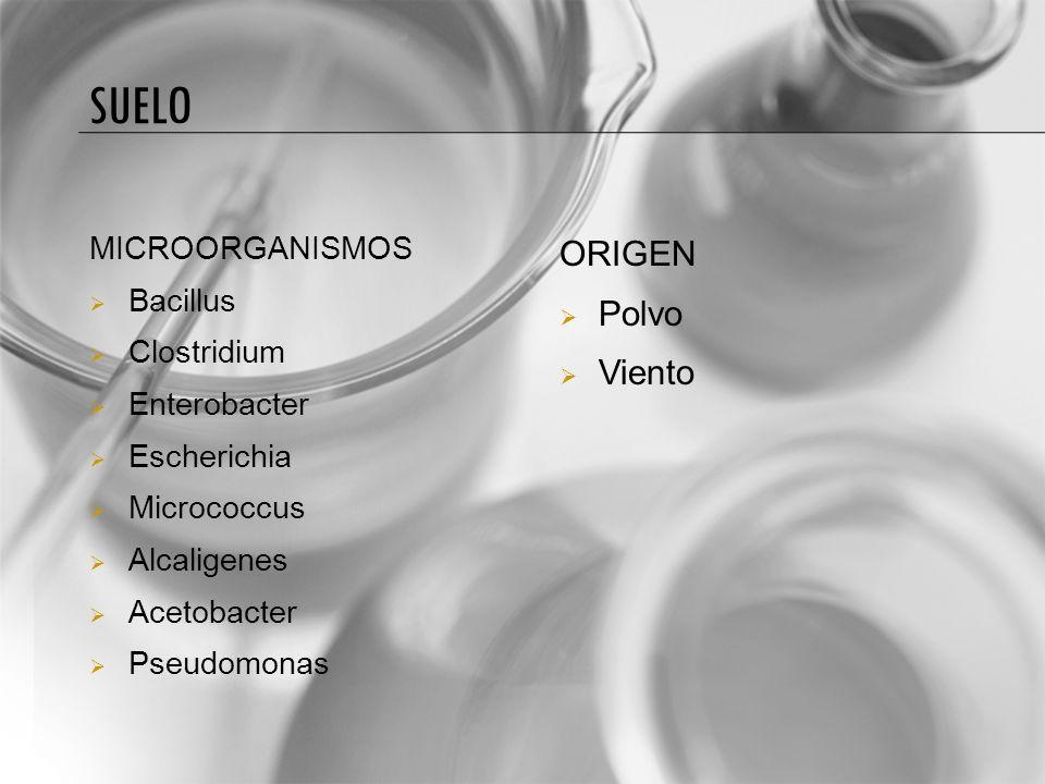 AGUA MICROORGANISMOS Pseudomonas Chromobacterium Proteus Micrococcus Bacillus Streptococcos Enterobacter ORIGEN Suelo Animales Plantas Aguas residuales