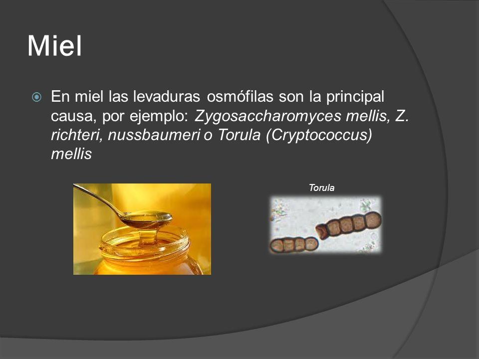 Miel En miel las levaduras osmófilas son la principal causa, por ejemplo: Zygosaccharomyces mellis, Z. richteri, nussbaumeri o Torula (Cryptococcus) m