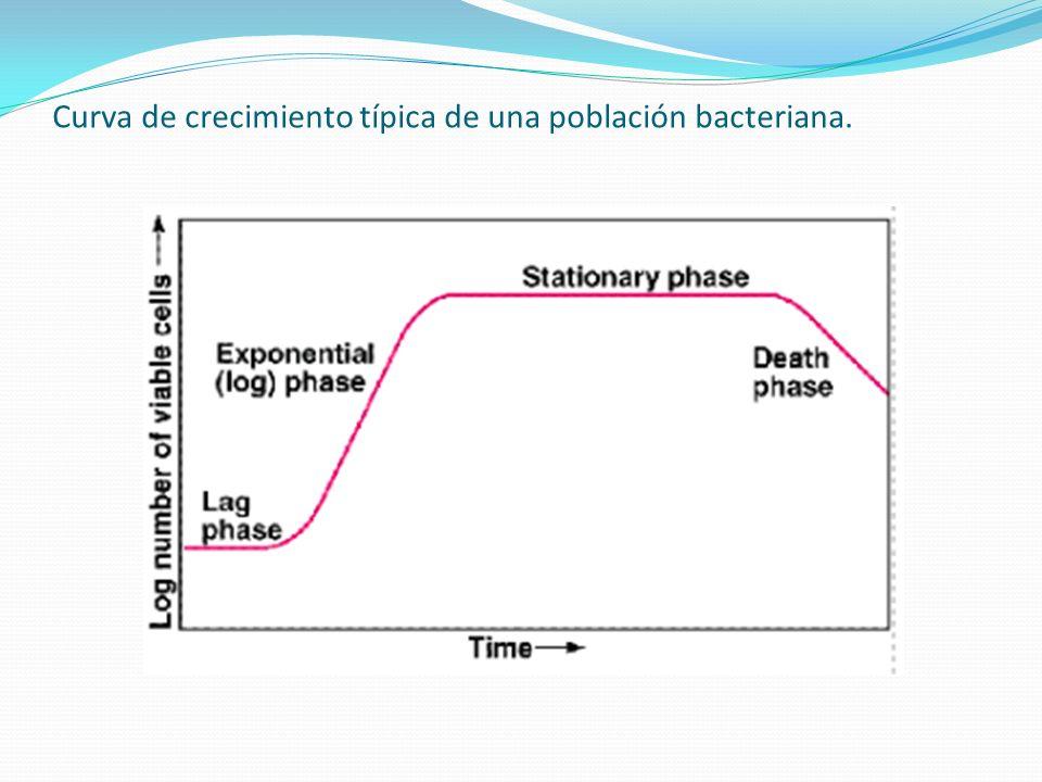 Curva de crecimiento típica de una población bacteriana.