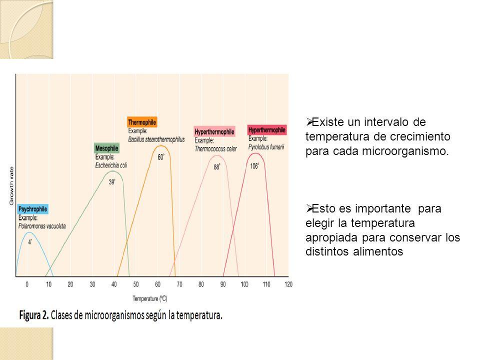 Existe un intervalo de temperatura de crecimiento para cada microorganismo. Esto es importante para elegir la temperatura apropiada para conservar los