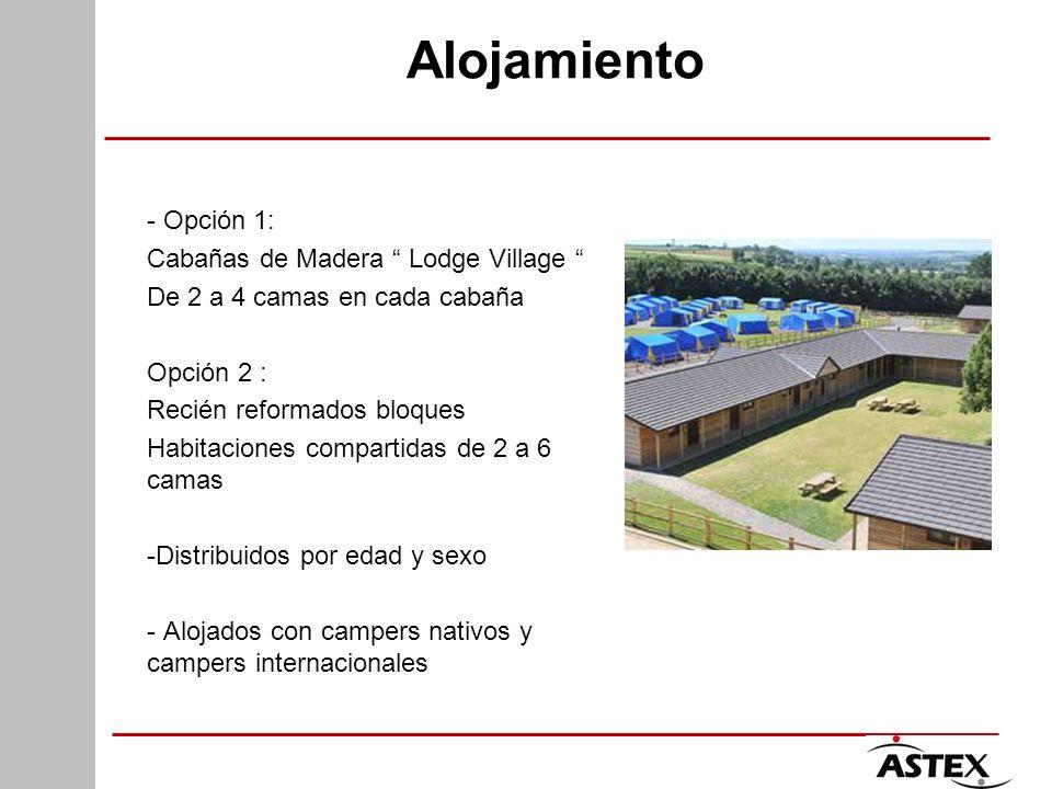 Alojamiento - Opción 1: Cabañas de Madera Lodge Village De 2 a 4 camas en cada cabaña Opción 2 : Recién reformados bloques Habitaciones compartidas de 2 a 6 camas -Distribuidos por edad y sexo - Alojados con campers nativos y campers internacionales
