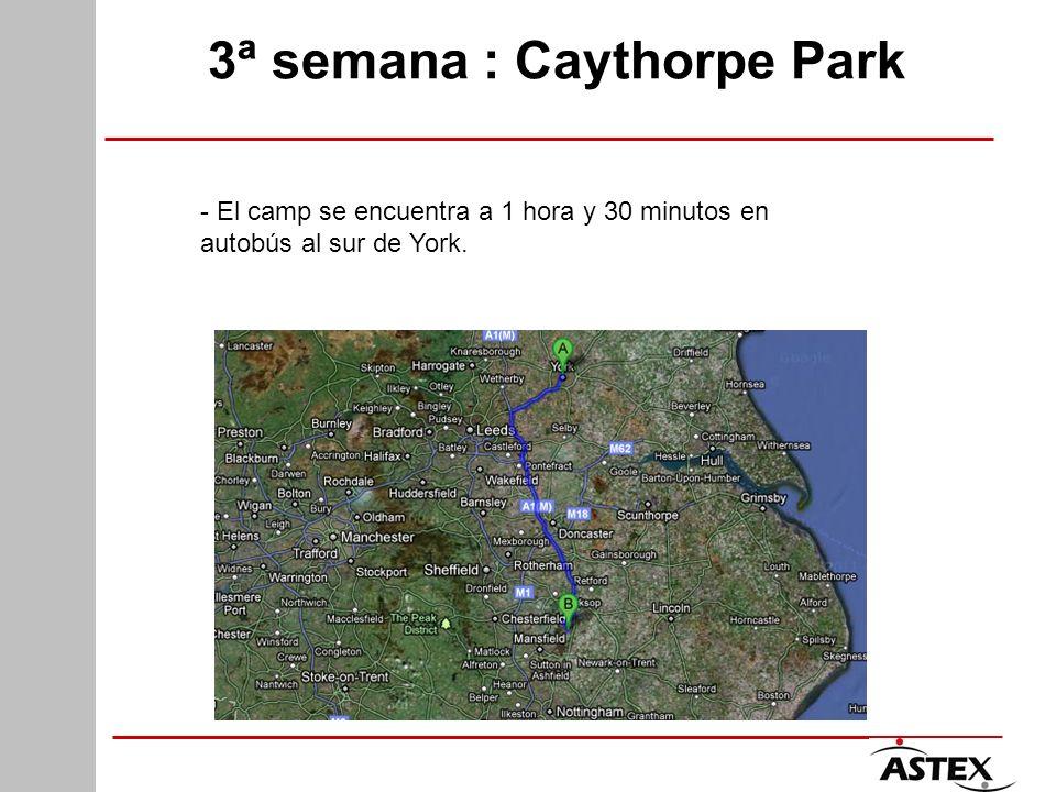 3ª semana : Caythorpe Park - El camp se encuentra a 1 hora y 30 minutos en autobús al sur de York.