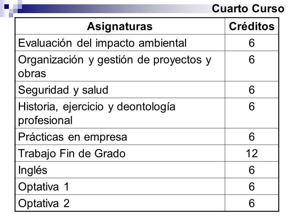 Cuarto Curso AsignaturasCréditos Evaluación del impacto ambiental6 Organización y gestión de proyectos y obras 6 Seguridad y salud6 Historia, ejercici