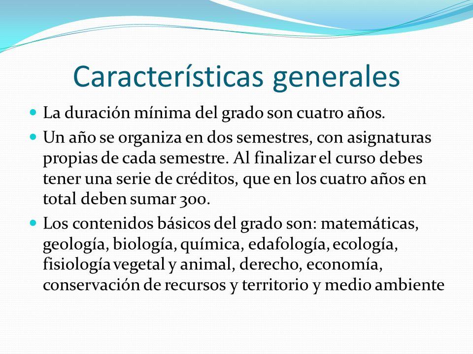 Características generales La duración mínima del grado son cuatro años. Un año se organiza en dos semestres, con asignaturas propias de cada semestre.