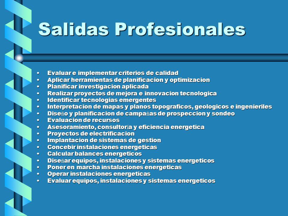 Salidas Profesionales Evaluar e implementar criterios de calidadEvaluar e implementar criterios de calidad Aplicar herramientas de planificacion y opt