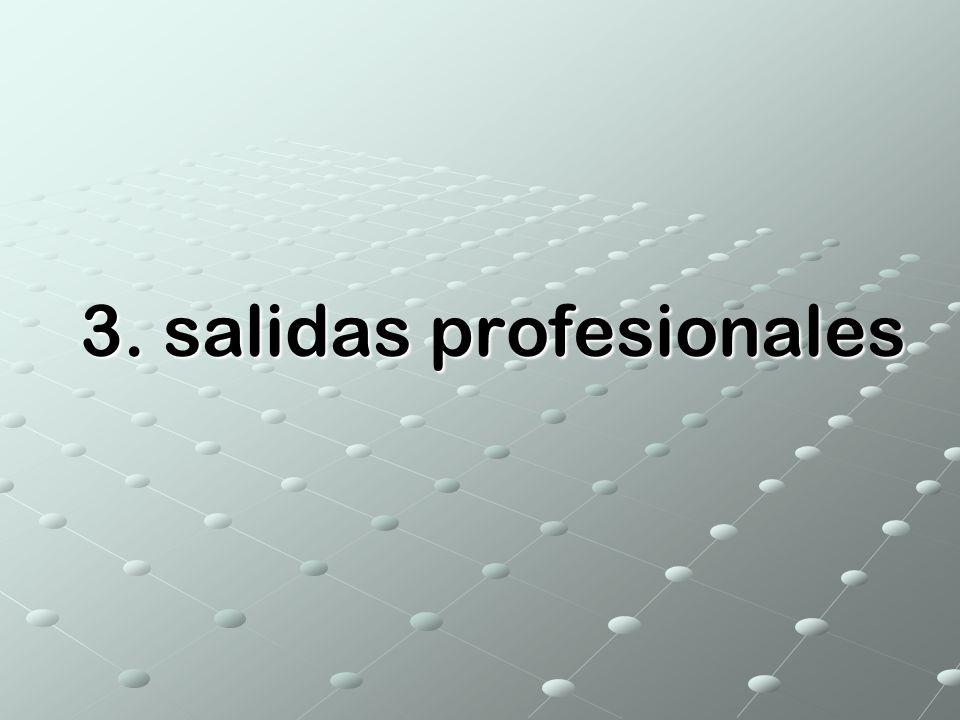 3. salidas profesionales