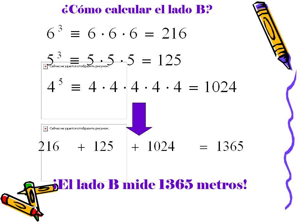 ¿Cómo calcular el lado B? ¡El lado B mide 1365 metros!
