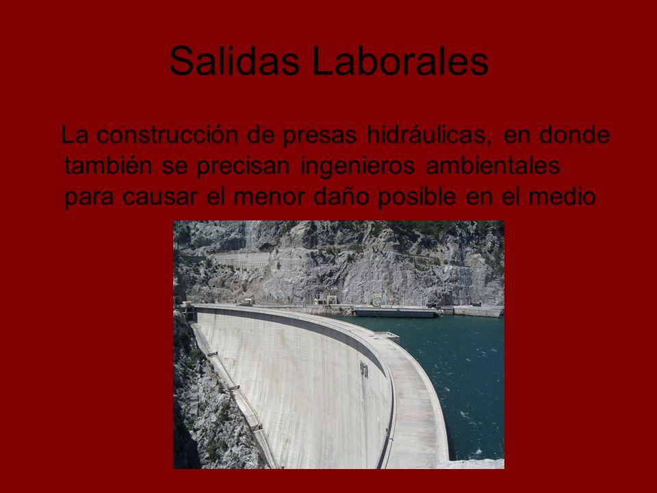 Salidas Laborales La construcción de presas hidráulicas, en donde también se precisan ingenieros ambientales para causar el menor daño posible en el m