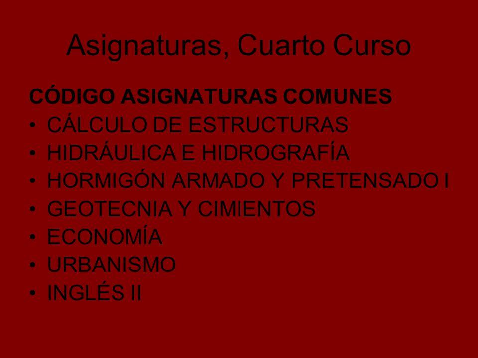 Asignaturas, Cuarto Curso CÓDIGO ASIGNATURAS COMUNES CÁLCULO DE ESTRUCTURAS HIDRÁULICA E HIDROGRAFÍA HORMIGÓN ARMADO Y PRETENSADO I GEOTECNIA Y CIMIEN