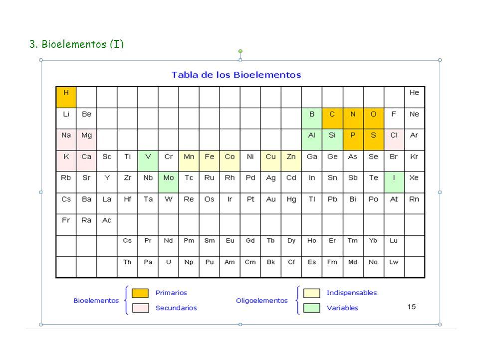 4. Bioelementos (II)