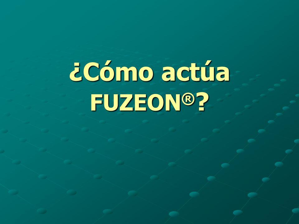 ¿Cómo actúa FUZEON ® ?