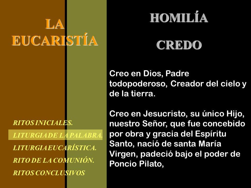 RITOS INICIALES. LITURGIA DE LA PALABRA. LITURGIA EUCARÍSTICA. RITO DE LA COMUNIÓN. RITOS CONCLUSIVOS LAEUCARISTÍA HOMILÍA Creo en Dios, Padre todopod