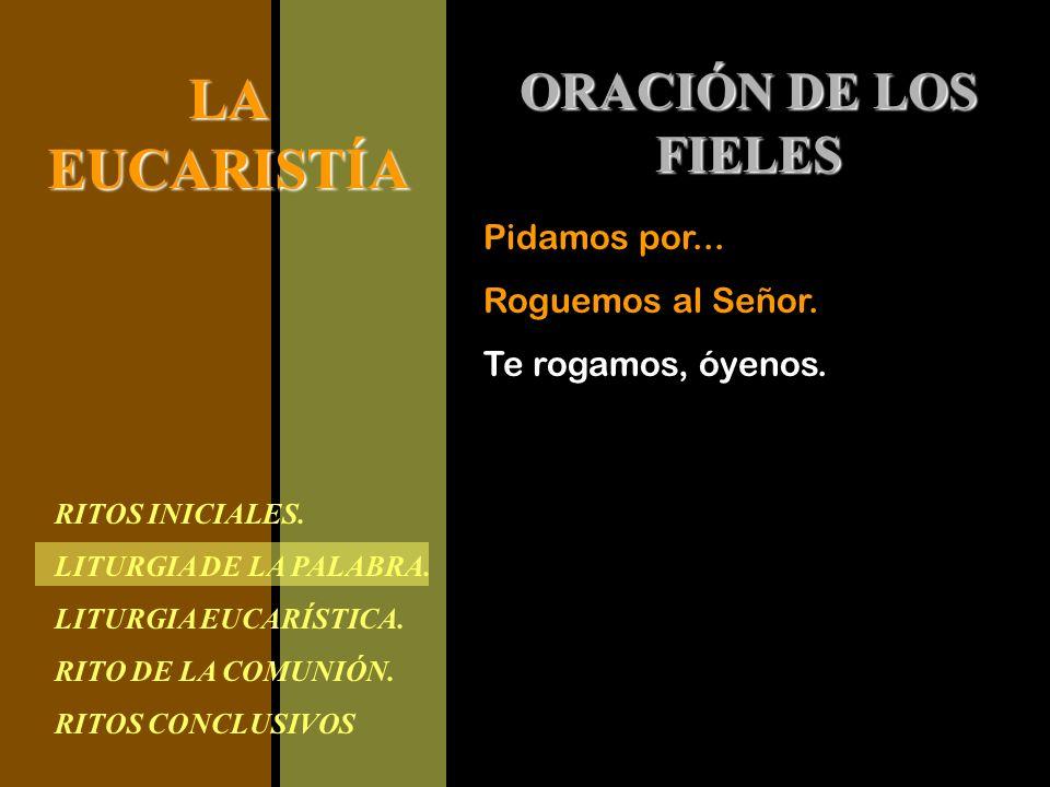 RITOS INICIALES. LITURGIA DE LA PALABRA. LITURGIA EUCARÍSTICA. RITO DE LA COMUNIÓN. RITOS CONCLUSIVOS LAEUCARISTÍA ORACIÓN DE LOS FIELES Pidamos por..