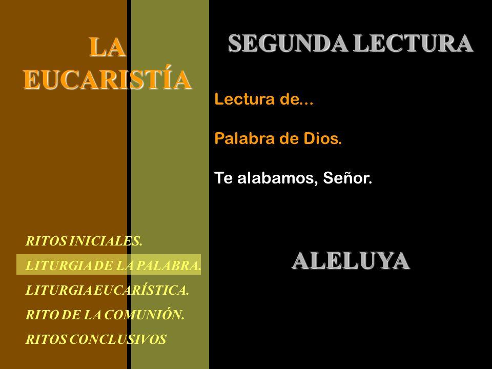 RITOS INICIALES. LITURGIA DE LA PALABRA. LITURGIA EUCARÍSTICA. RITO DE LA COMUNIÓN. RITOS CONCLUSIVOS LAEUCARISTÍA SEGUNDA LECTURA Lectura de... Palab