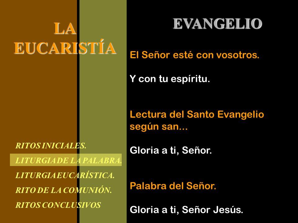 RITOS INICIALES. LITURGIA DE LA PALABRA. LITURGIA EUCARÍSTICA. RITO DE LA COMUNIÓN. RITOS CONCLUSIVOS LAEUCARISTÍA EVANGELIO El Señor esté con vosotro