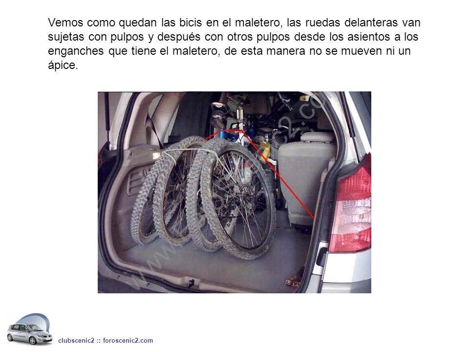 Vemos como quedan las bicis en el maletero, las ruedas delanteras van sujetas con pulpos y después con otros pulpos desde los asientos a los enganches que tiene el maletero, de esta manera no se mueven ni un ápice.