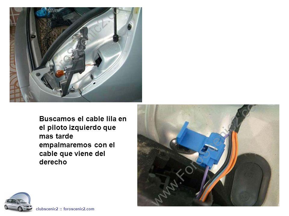 Buscamos el cable lila en el piloto izquierdo que mas tarde empalmaremos con el cable que viene del derecho clubscenic2 :: foroscenic2.com