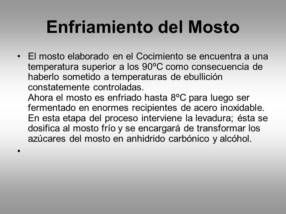 Enfriamiento del Mosto El mosto elaborado en el Cocimiento se encuentra a una temperatura superior a los 90ºC como consecuencia de haberlo sometido a