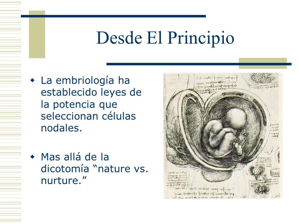 Desde El Principio La embriología ha establecido leyes de la potencia que seleccionan células nodales. Mas allá de la dicotomía nature vs. nurture.