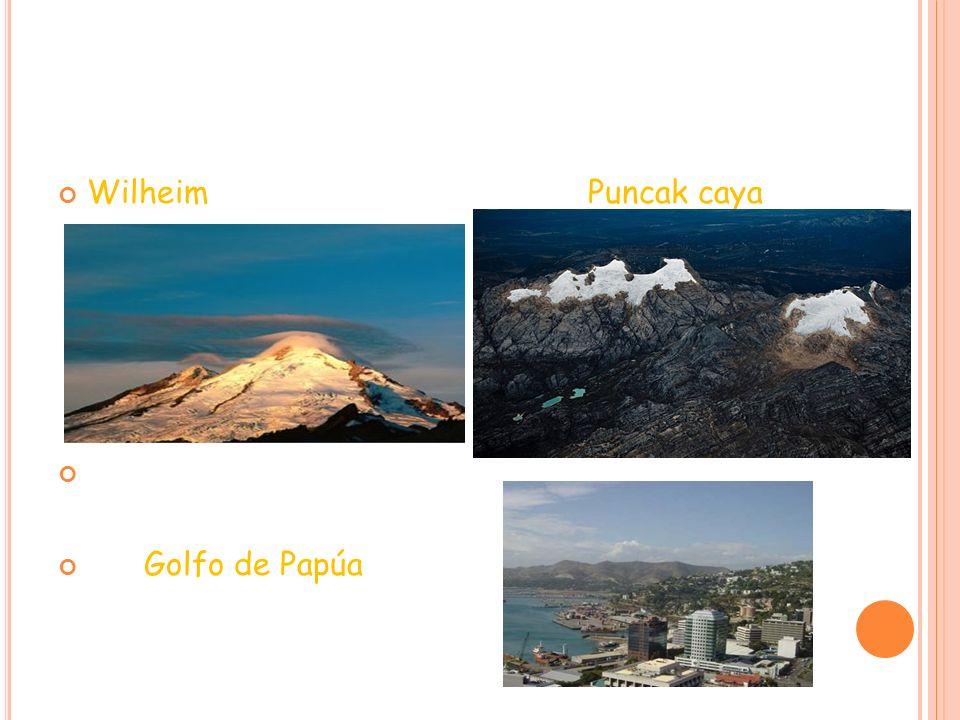 D ATOS DE INTERÉS 1.Puncak Jaya(4.884 m) - montes Maoke - Nueva Guinea 2.