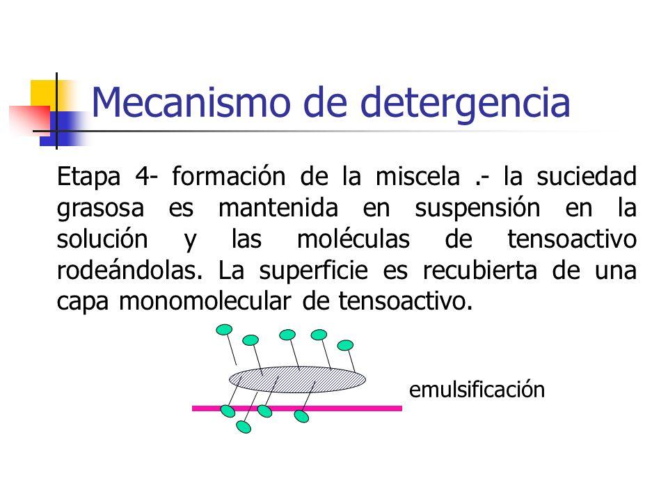 Mecanismo de detergencia emulsificación Etapa 4- formación de la miscela.- la suciedad grasosa es mantenida en suspensión en la solución y las molécul